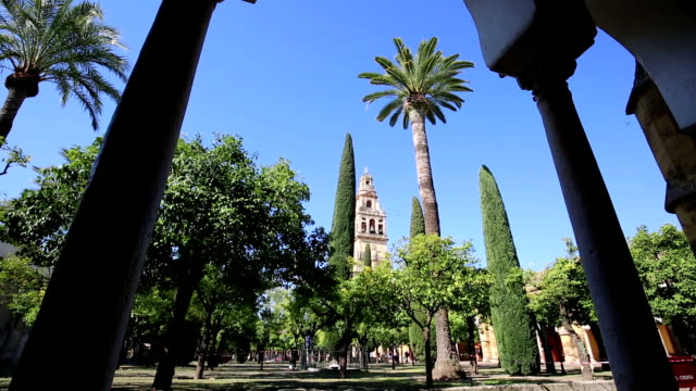 Inside the mezquita (a surprising mixture of mosque and cathedral) in Cordoba, Spain. A big courtyard with orange trees and cypresses. Bell tower in the background. video
