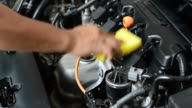 Inspect engine compartment for trouble video