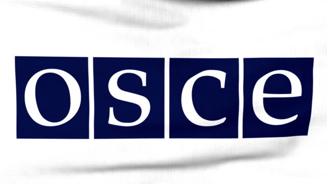 International flag of OSCE flying on the wind video