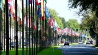 International Flags in The Hague, Holland video