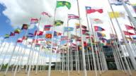 International flags video