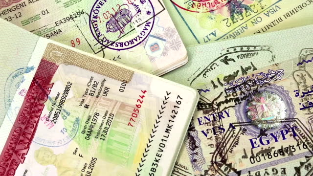 International passports with visas video