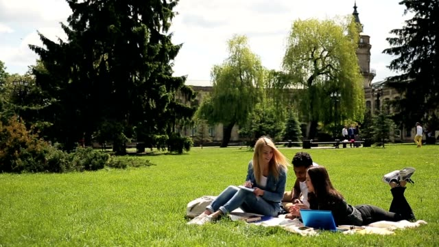 Interracial group of students studying outdoors. video
