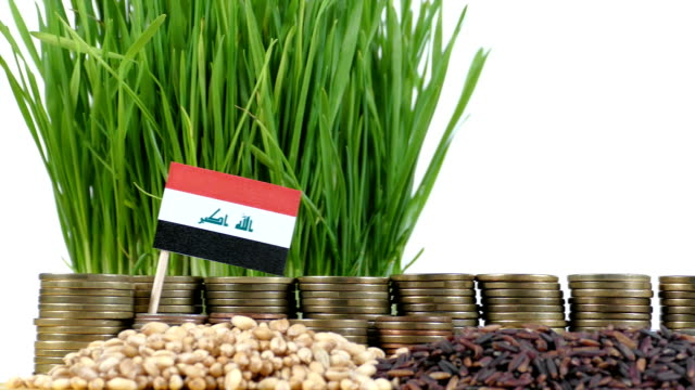 Iraq flag waving with stack of money coins and piles of wheat video