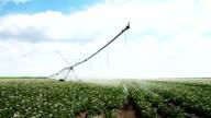 Irrigation system video