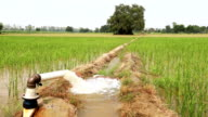 Irrigation video