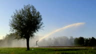 irrigation with cannon video