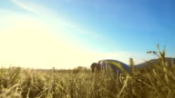HD: Islamic Man Prostrating In The Grass video
