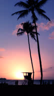 Island paradise at sunset vertical HD video