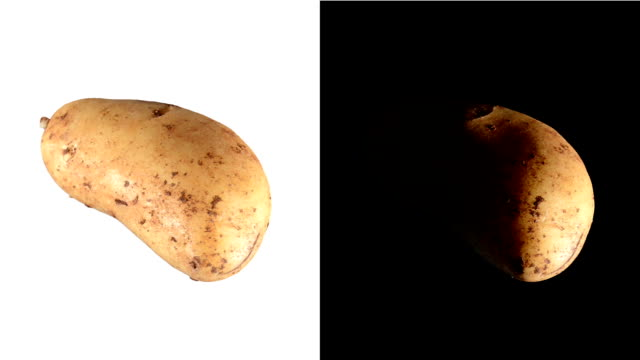 ALPHA: Isolated potato video