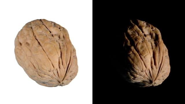 ALPHA: Isolated walnut video