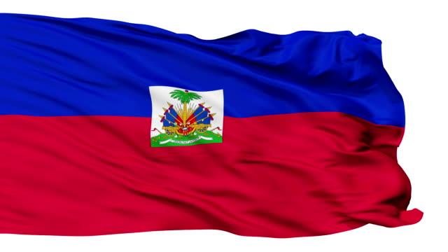 Isolated Waving National Flag of Haiti video