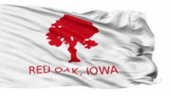 Isolated Waving National Flag of Red Oak City, Iowa video