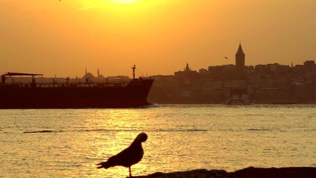 Istanbul Bosphorus video