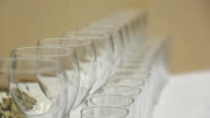It is focusing view of glasses served in banquet table standing in row video