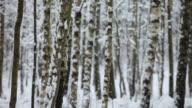 It´s Snowing video