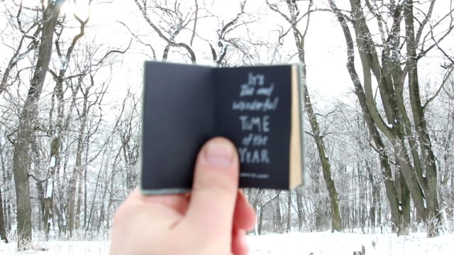 It's the most wonderful time of the year. Hand holding a book with text on background - winter park video