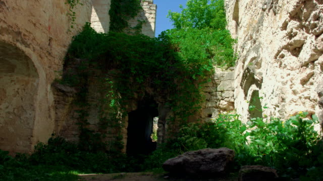 Ivied ruins of old castle video