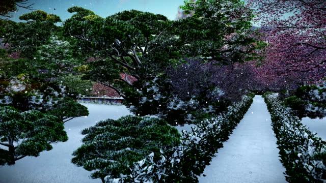 Japanese garden in winter, sun shining between trees, sunset, tilt video