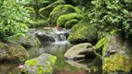 Japanese Garden Stream video