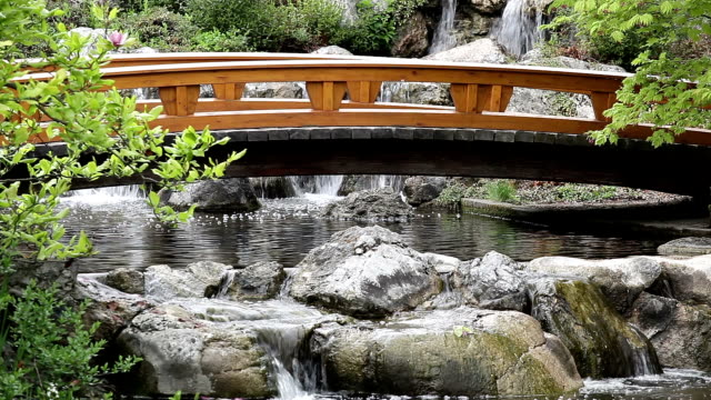 Japanese Garden with Bridge video