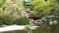 Japanese Garden With Super-Zoom-In-Effect video