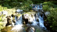japanese garden with waterfall video