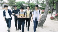 MS Japanese students hanging out in the park video