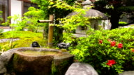 Japanese temple garden in Kyoto video