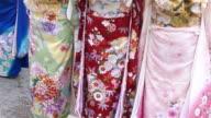 Japanese women in kimono video