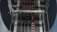 Jars on assembly line in Jam Factory, medium shot video