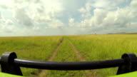 Jeep driving through Kenyan national park Maasai Mara video