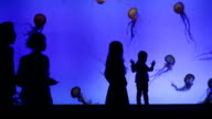 Jelly fish in big aquarium with silhouettes of people video