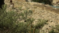 Jerusalem Cemetery on the Mount of Olives video