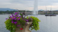 Jet D'eau Fountain and flowers at Geneva Lake, Switzerland video