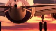 Jet landing at sunset video