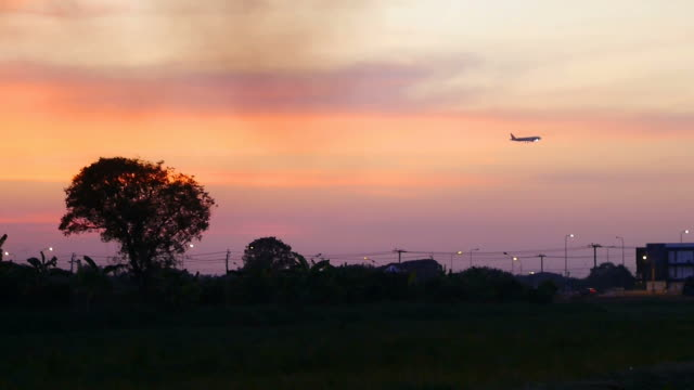 Jet plane landing on sunset background. video