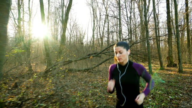 Jogging in autumn time. video