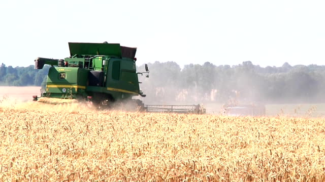 Khmelnitskiy, Ukraine - July 23: John Deere combine harvesting grain video