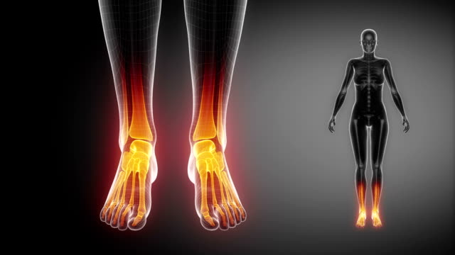 ANKLE joint skeleton x-ray scan in black video
