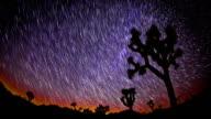 Joshua Tree Star Trails video