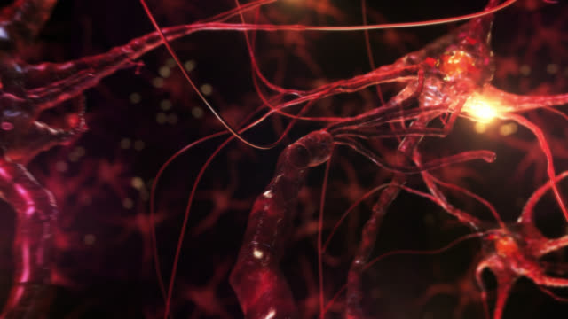 Journey inside a neuron cell network. Red. Loopable. video