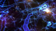 Journey inside a neuron cell network. Tecno Blue. Loopable. video