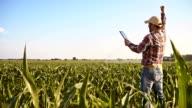 SLO MO Joyful farmer punching the air video