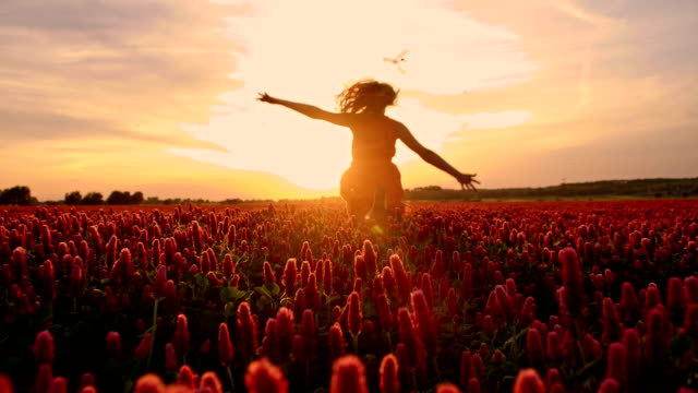 SLO MO Joyful girl running in the field of flowers video