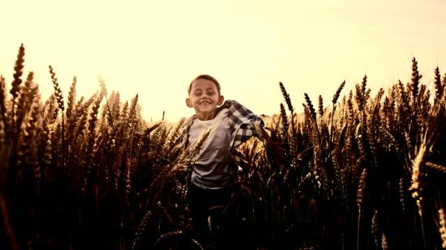 SLO MO Joyful little boy running in wheat field video