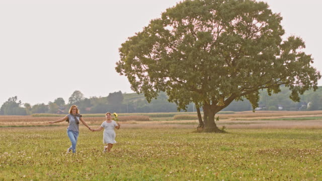 DS Joyful mother and daughter skipping in a meadow video