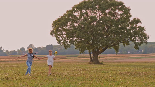 SLO MO Joyful mother and daughter skipping in a meadow video