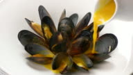 Jug pours sauce on mussels. video