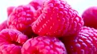 Juicy fresh raspberries rotating. Raspberries fruit background. Macro shot. video